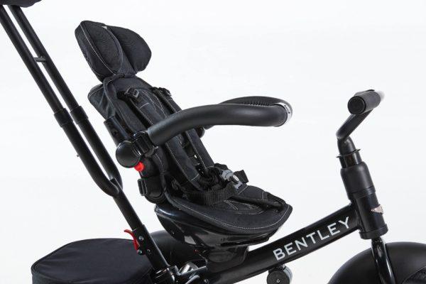 bentley details 05